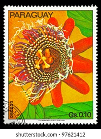 PARAGUAY - CIRCA 1973: A stamp printed in Paraguay shows tropical flowers, circa 1973