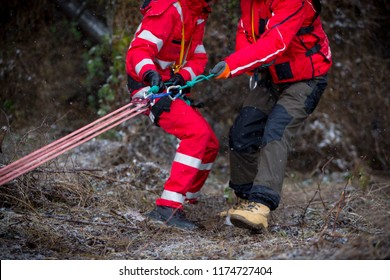 Paramedics from mountain rescue service provide first aid during a training for saving a person in accident in the forest. Unrecognizable people with ropes and carabiners.