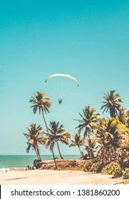 Paramotors flying above the beach. Adventure man active extreme sport pilot flying in sky with paramotor engine glider parachute in Coqueirinho, Paraiba, Brazil