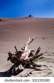 Parangtritis sand dune in afternoon hot day, Yogyakarta, Indonesia.