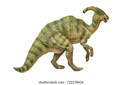 Parasaurolophus Living Dinosaurs In Late Cretaceous Dinosaur Herbivores Have Crest On Their Heads Isolated