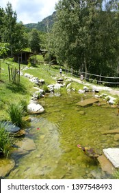 Parc Animalier d'Introd, osta Valley (Italy): view on the pond