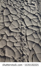 Parched dry mud bed, cracked in the sun