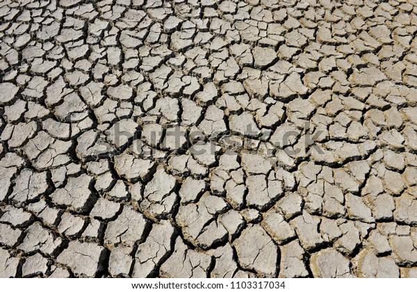 The parched soil