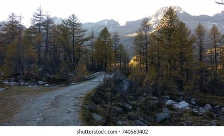 Parco Naturale Alpe Veglia