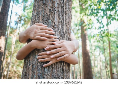 Parent and child give a hug to the old tree in the tropical forest, save and protect the forest for the future