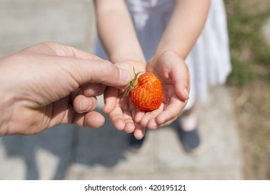 parent and child hand over the strawberry