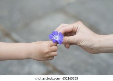 Parent and child handing blue flower