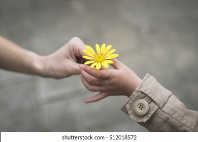 Parent and child hands handing yellow flowers