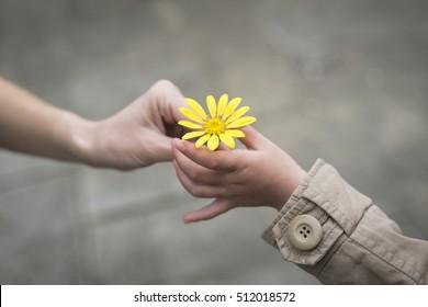 Pais e crianças mãos entregando flores amarelas