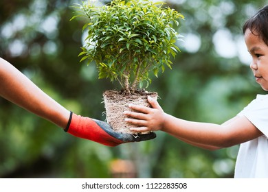 Parent hand wearing the glove giving young tree to a child for planting together in green nature background