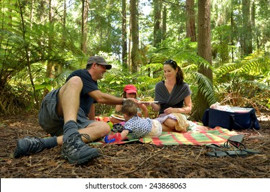 Parents with children family having a picnic outdoors in Redwoods Forest, Whakarewarewa, New Zealand. Real people. Copy space