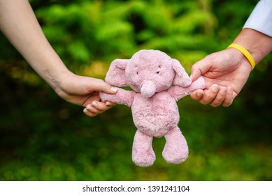 Parents holding an elefant baby toy for their future baby