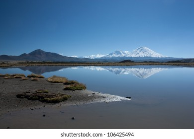 Parinacota, Pomerate and Guaneguane Volcanoes reflecting in a lagoon in Lauca National Park, northern Chile