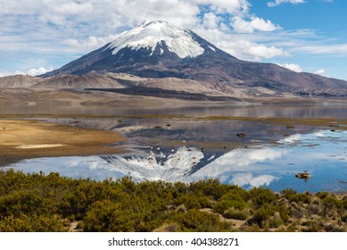 Parinacota volcano and Chungara lake, Lauca National Park (Chile)