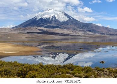 Parinacota volcano and Chungara lake, Lauca National Park, Chile