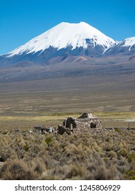 Parinacota volcano. High Andean landscape in the Andes. High Andean tundra landscape in the mountains of the Andes. The weather Andean Highlands Puna grassland ecoregion,