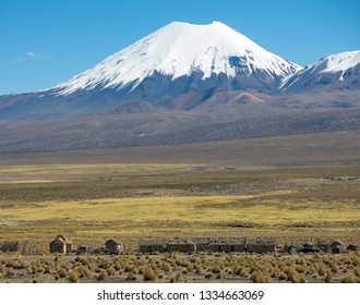 Parinacota volcano. High Andean tundra landscape in the mountains of the Andes. The weather Andean Highlands Puna grassland ecoregion, of the montane grasslands and shrublands biome.