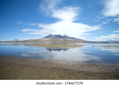 Parinacota volcano in National parc lauca in Chile. The volcan reflect in Chungara lake, one of the highest in the world