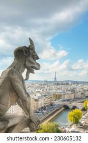 Paris aerial view with Chimera of Notre Dame de Paris