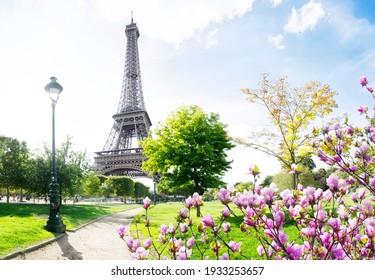 Paris Eiffel Tower with park pathway in Paris at spring, France. Eiffel Tower is one of the most iconic landmarks of Paris.