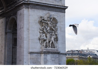 Paris, France - April 26, 2016 - A bird flying around The Arc de Triomphe detail in Paris