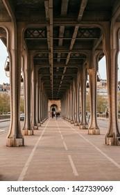 Paris, France - April 7, 2019: beautiful view on the Pont de Bir-Hakeim with the metro train.