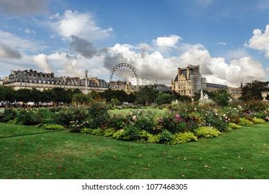 Paris, France - August 9, 2017. Tuileries Gardens, Louvre and amusement park with ferris wheel in Paris. Blooming Jardin des Tuileries public park in city center - popular tourist attraction.
