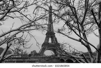 Paris, France : Black and white Eiffel tower with bare trees in winter.