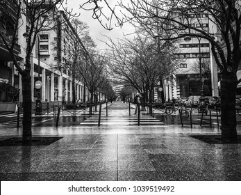 Paris / France - February 15th 2018: Urban scene
