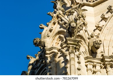 Paris, France: Gargoyle statues on the walls of Notre Dame Cathedral in Paris.