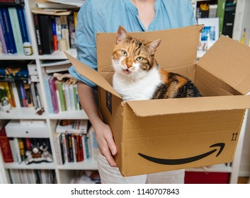 PARIS, FRANCE - JUL 4, 2018: Talking pet cat exits from Amazon Prime cardboard after delivery by courier and unboxing by woman in the living room