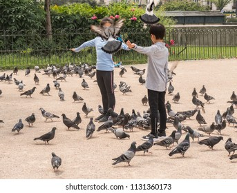 PARIS, FRANCE - June 11, 2018: Two children playing the park with pigeons flying and landing on their arms.