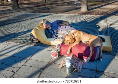 Paris, France - November 4, 2012: The unidentified homeless is begging with dogs on Champs Elysees avenue