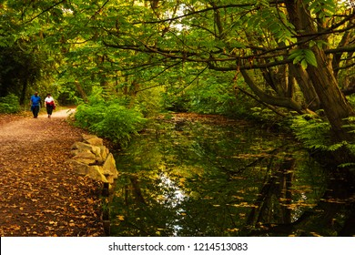 PARIS, FRANCE - OCTOBER 14, 2018: Mature couple walking near creek at Vincennes forest of Paris at sunset. Medical studies show that walking can reduce the risk of stroke in elderly people.