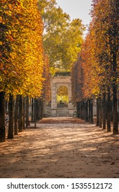Paris, France - October 2019 : Alley of the Jardin des Tuileries covered with orange autumn leaves, Tuileries garden in Paris France on a beautiful Fall day