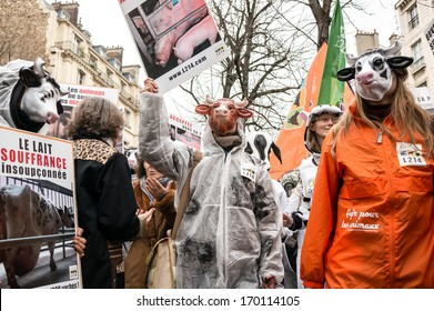PARIS - JANUARY 7, 2014: People with cow mask protest against the farm-factory near the National Assembly. The farm-factory is condemned by the protestors because of infringement of animal rights.