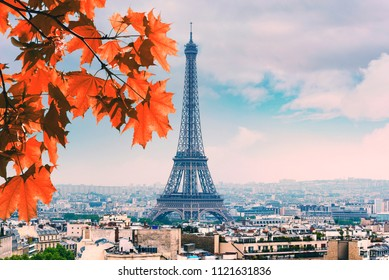 Paris red Maple and Eiffel Tower autumn leaves in fall Day