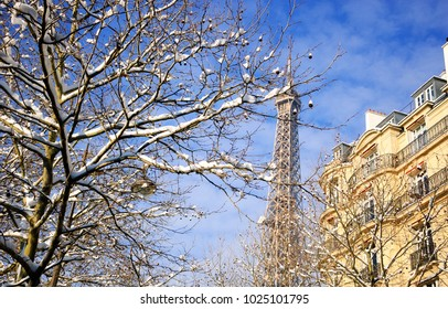 Paris under snow. Eiffel tower. Snowy park.