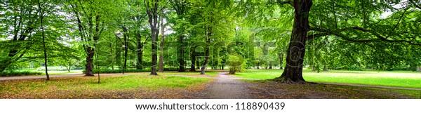 Park im Herbst - Panoramablick