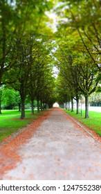 Park avenue at Schloss Bruchsal