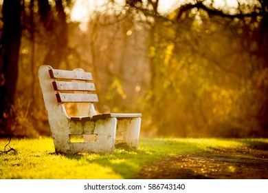 Park bench during sunset.