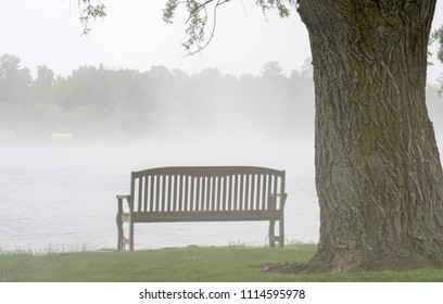 Park bench in the fog in a beautiful Michigan USA park