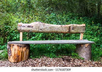 park bench in a forest