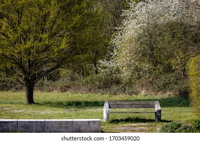A park bench in front of a spring scenery