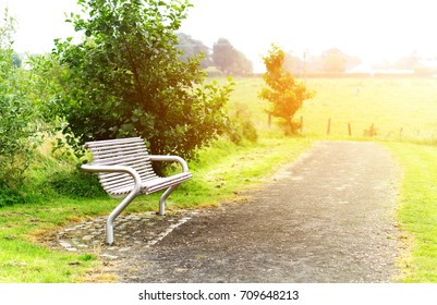 A park bench in front of a tree in bright sunshine with artistic glow effect