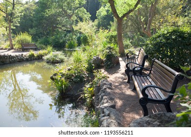 Park bench near the pond