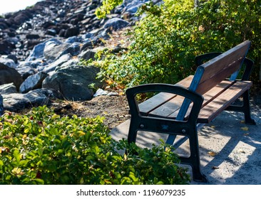 Park bench next to a hedge overlooking a rocky beach