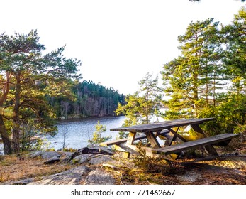 Park bench on top of a mountain with view over a fjord, pine trees on the sides with no people