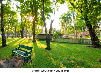 Park and bench for recreation area in the city, Green grass
